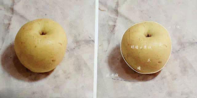 你是我的呀苹果——单个苹果的画