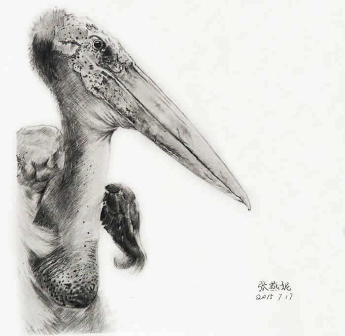 杭州吴越画室非高三班精微超写实素描课程汇报