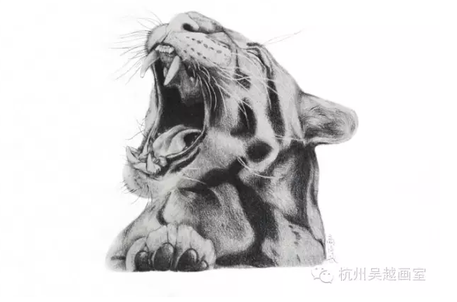【吴越课程】暑假班班精微超写实素描课程:杭州吴越画室