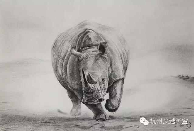 非高三班精微超写实素描课程汇报|杭州吴越画室