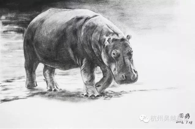 非高三班精微超写实素描课程汇报 杭州吴越画室
